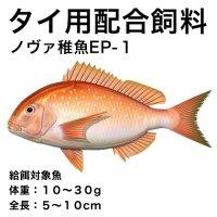 ノヴァ稚魚EP-1